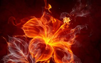 Fire Flower Abstract Neat Image For Free