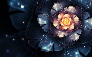 Flowers Fractals Bloom Digital Art High Resolution iPhone Photograph