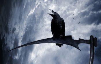 Gothic Crows Sky Braid Hair Fantasy Reaper Scythe