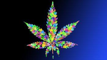 Leaf Drugs Leaves Marijuana Weeds Colorful Photograph Free Get