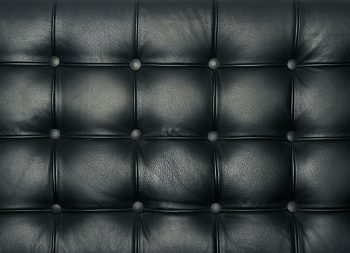 Leather Upholstery Black