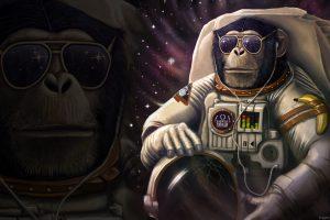 Monkey Sunglasses Astronaut Wtf Banana