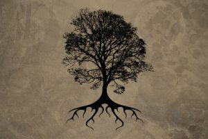 Trees Silhouette Roots Neat Image For Free